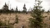 C23 Alaskan Wildwood Ranch(R) - Photo 36