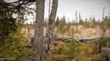 C23 Alaskan Wildwood Ranch(R) - Photo 37