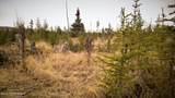 C23 Alaskan Wildwood Ranch(R) - Photo 38