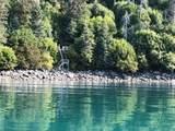 49726 Halibut Cove - Photo 2