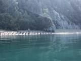 49726 Halibut Cove - Photo 4
