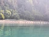49726 Halibut Cove - Photo 8