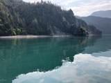 49726 Halibut Cove - Photo 9