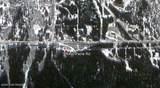 8460 Paine Road - Photo 1