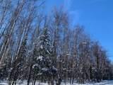 Tr 1A Cheri Lake - Photo 1