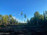 15790 Timber Circle - Photo 2