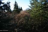 L2 Mossberry - Photo 5