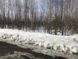 13701 Klondike Drive - Photo 5