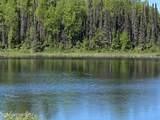 48950 Silver Salmon Circle - Photo 18