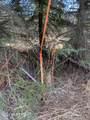 38405 Woody Circle - Photo 6