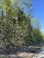 52033 Caswell Loop - Photo 3