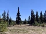 33071 Conifer Circle - Photo 2
