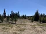 33071 Conifer Circle - Photo 5