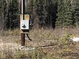 32488 June Drive - Photo 5