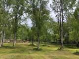 41710 Liberty Circle - Photo 41