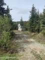 57833 Blueberry Glen Court - Photo 1