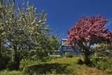 40070 Fernwood Drive - Photo 6