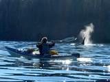 L1-2 Otter Cove - Photo 25