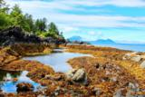 L150 Mertz Island - Photo 91