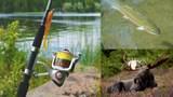 Tr N Star Lake Asls 73-110 - Photo 7