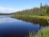000 Chuvena Lake Homestead - Photo 60