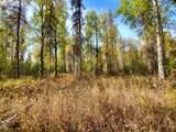 18375 Montana Creek Road - Photo 6