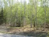 Tract C Meadow Lakes Loop - Photo 3