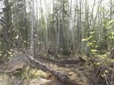 Tract C Meadow Lakes Loop - Photo 5