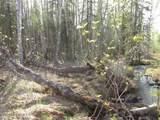 Tract C Meadow Lakes Loop - Photo 6