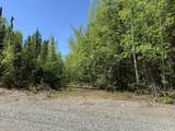 22320 Susitna Parkway - Photo 4