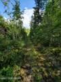 000 Big Timber Circle - Photo 7