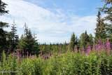 C13 Alaskan Wildwood Ranch(R) - Photo 1