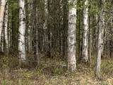6615 Spruce Hen Drive - Photo 3