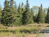 15573 Wild Salmon Way - Photo 10