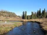 15573 Wild Salmon Way - Photo 11