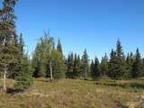 15573 Wild Salmon Way - Photo 13