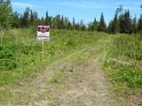 15573 Wild Salmon Way - Photo 2