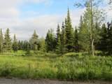15573 Wild Salmon Way - Photo 3