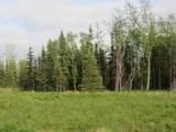 15573 Wild Salmon Way - Photo 4