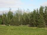 15573 Wild Salmon Way - Photo 5