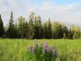 15573 Wild Salmon Way - Photo 6