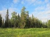 15573 Wild Salmon Way - Photo 7