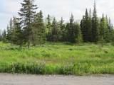 15573 Wild Salmon Way - Photo 8