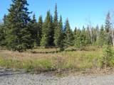 15573 Wild Salmon Way - Photo 9
