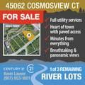 45062 Cosmosview Court - Photo 24