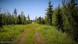 C22 Alaskan Wildwood Ranch(R) - Photo 10