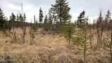 C22 Alaskan Wildwood Ranch(R) - Photo 13