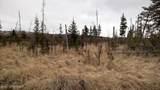 C22 Alaskan Wildwood Ranch(R) - Photo 14