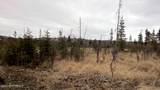 C22 Alaskan Wildwood Ranch(R) - Photo 16