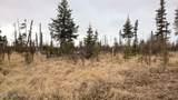 C22 Alaskan Wildwood Ranch(R) - Photo 17